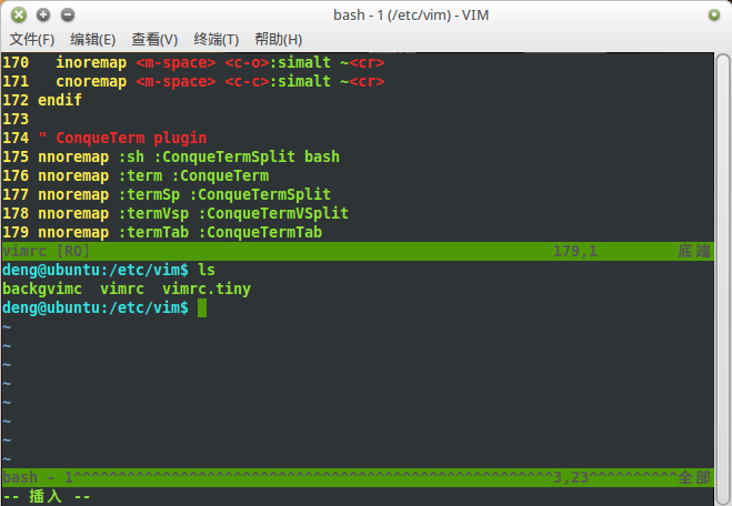 bash-in-vim